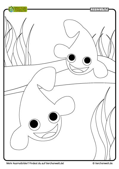 Malvorlage Clownfisch