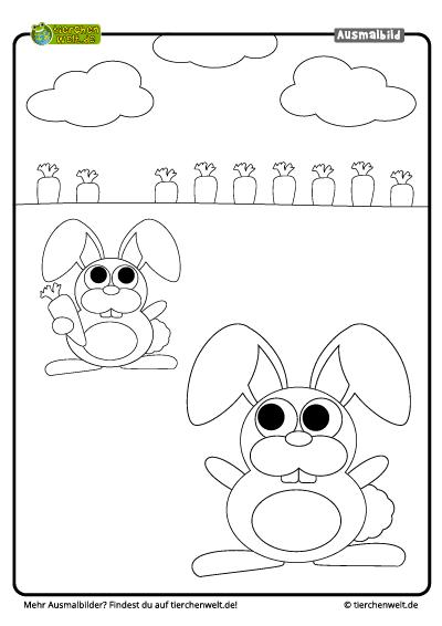 Malvorlage Hase